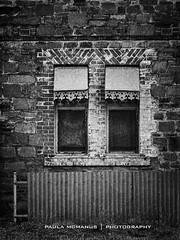Shutters (Paula McManus) Tags: windows blackandwhite window wall olympus shutters outback terowie paulamcmanus outbacksouthaustralia