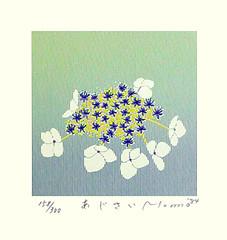 Hydrangea (Japanese Flower and Bird Art) Tags: flower hydrangea hydrangeaceae momo shimizu modern screenprint print japan japanese art readercollection