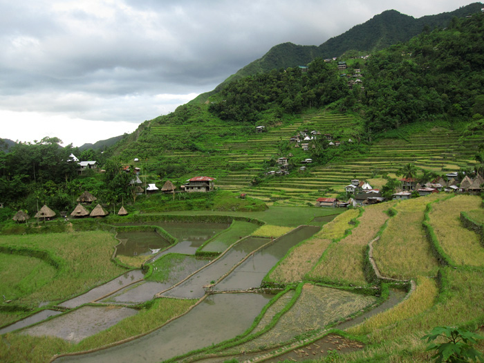 5812023057 69e2fd43e3 o Photo Essay: Batad Rice Terraces in the Philippines