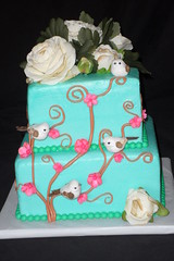 "ivy and birds cake • <a style=""font-size:0.8em;"" href=""http://www.flickr.com/photos/60584691@N02/5822328991/"" target=""_blank"">View on Flickr</a>"