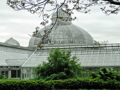 Allan Gardens Conservatory by Maia C, on Flickr