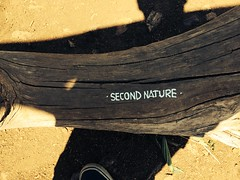 Adventuring in the hills #dirtyshoes #adventures #tags #alwaysrep #secondnature #thecollective BayAreaGraff Kevin Reyes (Baylivin!) Tags: tags adventures dirtyshoes thecollective secondnature alwaysrep