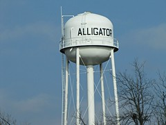 I wonder how the gators were hoisted into this elevated pool? (jimsawthat) Tags: sky mississippi town funny small watertower delta alligaor