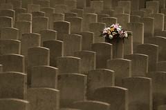 Remembered (Doris Burfind) Tags: flowers cemetery grave graveyard death memorial war headstone hamilton gravestone soldiers bouquet
