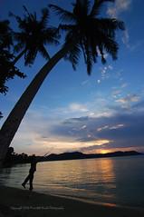 (Micartttt) Tags: sunset silhouette malaysia penang micarttttworldphotographyawards micartttt