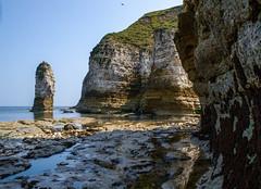 Rock Stack at Flamborough Head (Tom Blanden) Tags: cliff beach chalk yorkshire stack pools layers headland flamborough