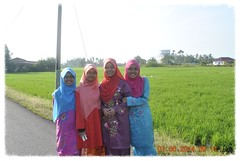 @Kota Kuala Muda [Jun 2014] (Rosli Ahmad) Tags: kedah sawah kotakualamuda 01062014