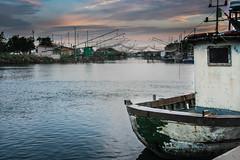Porto Garibaldi e le sue reti, Ferrara, Emilia Romagna (william eos) Tags: barche pesca comacchio portogaribaldi retidapesca deltadelp casonidapesca williamprandi
