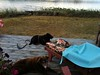 IMG_6133 (Mackoyna) Tags: camping vintage trailer boler glamping