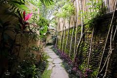 Walkway to the villas (A. Wee) Tags: sankara resort hotel  ubud bali  indonesia