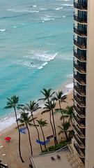 (Mitchell Lafrance) Tags: 2016 vacation travel holiday hawaii oahu moanasurfrider waikikibeach beach