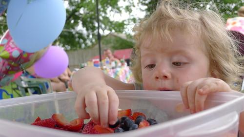 Blueberry Eater