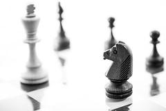 schach springer bewegung