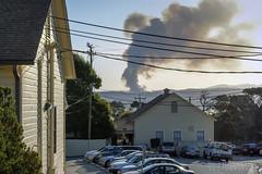"""Controlled"" Burn on Fort Ord (Steve Holsonback) Tags: california monterey fort burn peninsula ord presidio controlled prescribed"