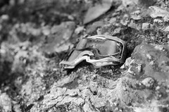 distorted view (S.askins15) Tags: broken goggles view distorted blackandwhite film 35mm woods outside abandoned walk