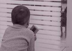 Boy and dog (Oigen Quark) Tags: boy dog pet animal clinic