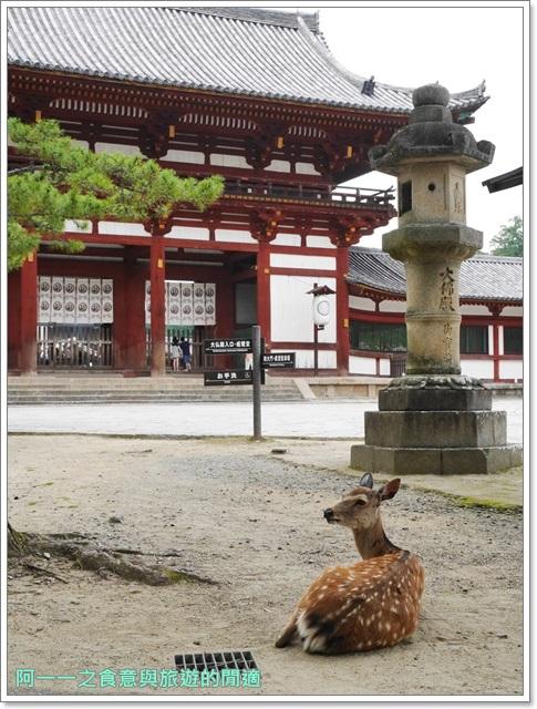 奈良景點.美食.東大寺.二月宮.鹿.葛切.日式甜點image019