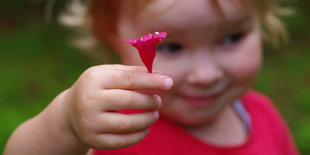 a flower for you! | Eine Blume für Euch!