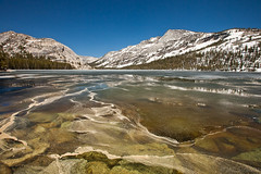 Ice and Pollen in Tenaya Lake (Jeffrey Sullivan) Tags: california copyright usa lake ice jeff nature june canon landscape photo patterns yosemitenationalpark pollen sullivan waterscape tiogapass tenaya iceout 2011 5dmarkii
