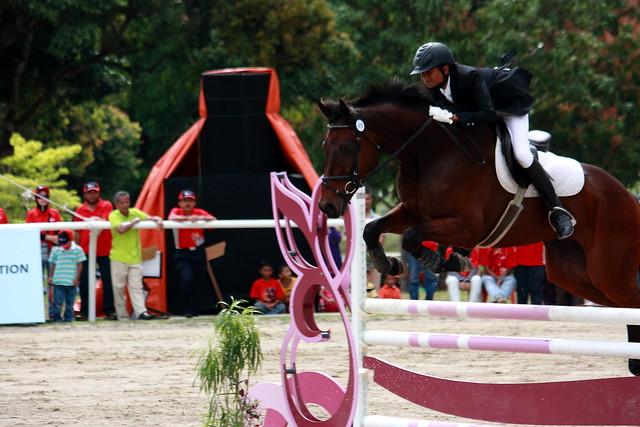 Horseshow_05