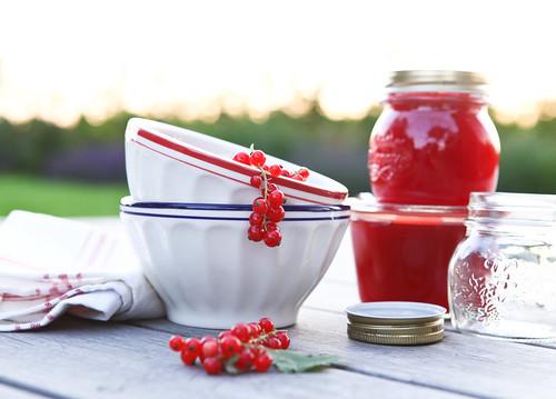aalbessenconfituur/red currant jam