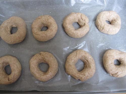 Proto-bagels