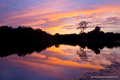 Wish You Were Here (Dan Sherman) Tags: sunset lake reflection orlando pond florida sunsetreflection tropics orlandoflorida tropicalsunset floridasunset orlandolake