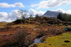 Mountain stream (Rikon72) Tags: uk trees sky mountain wales clouds countryside nikon stream britishisles unitedkingdom britain snowdonia britishcountryside northwales capelcurig d90 welshcountryside nikond90