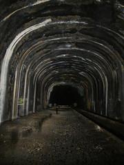 tunnel of doom (Mycophagia) Tags: train tunnel inthetunnel