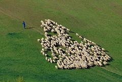 Toscana (frank35440) Tags: italy tuscany siena toscana 2012 toskana