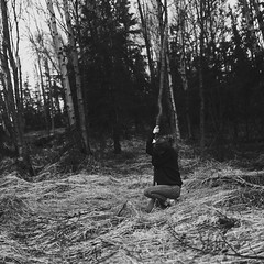 you can stand me at the gates of hell but I won't back down (~Lauren Parker) Tags: white black tree forest project stand back branch gates hell down days 365 expansion 365days