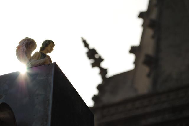 Angel en Cementerio