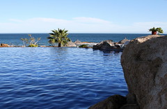 Infinity (Shellnort) Tags: ocean blue water mexico cabo bleu pools cabosanlucas