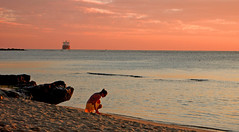 Looking For Shells... (TablinumCarlson) Tags: ocean africa leica 2 shells beach maurice shell clam explore afrika mauritius clams dlux muscheln explored sunseset