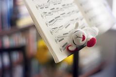 Lanita and Bach (lfviolin) Tags: music 50mm stand nikon sheep bach violin lamb chaconne lanita