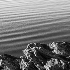 123. Tidal Wave (Lonyl) Tags: bw white black water norway canon square 50mm fjord trondheim korsvika project365 365days 40d