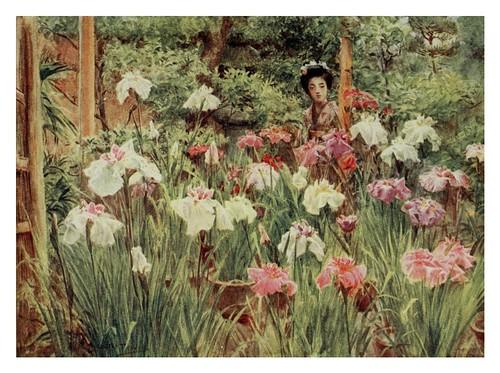 013-Flores de Iris-Japanese gardens 1912-Walter Tyndale