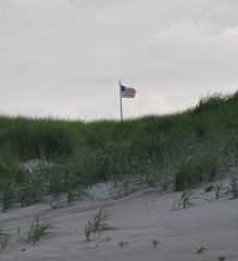 This is America! (Mauigirl 2011) Tags: ocean blue sky brown beach water birds clouds sand nikon gulls longbeach d90 longbeachwa nikoncapture nikond90