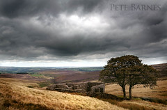 Wuthering Heights - Explored (Pete Barnes Photography) Tags: trees sky cloud storm tree art clouds landscape book moody cloudy top traditional dramatic literature moors moor heights bronte westyorkshire haworth howarth wutheringheights withering wuthering withens topwithens