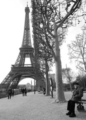 Al pie de la torre (carlos_ar2000) Tags: park street old parque people man paris tree tower primavera bench arbol calle spring gente banco oldman eiffel viejo francia hombre tore carlosredondo credondo carlosaredondo credondofotografia carlosredondofotografia credondofotos carlosaredondofotografia