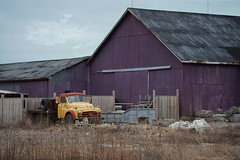 Barn Series #13   The Purple Barn (marykpics) Tags: winter barns 15 woodenstructure coldday ruralontario lambtoncounty barnboard barnseries purplebarn