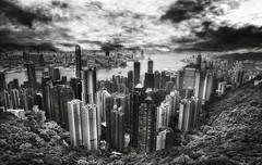 Hong Kong in BW (D'ArcyG) Tags: china city sea blackandwhite bw hongkong asia