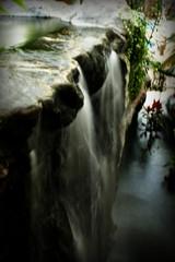 Tropical Falls (_Matt_T_) Tags: longexposure pentax handheld kr nofilters simay smcpf28mmf28