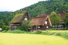 Shirakawa (Wunkai) Tags: nogun gifuken japan shirakawa  paddy    ogimachi  thatchedroof