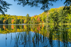 Bass Lake (Wicked Dark Photography) Tags: landscape wisconsin autumn fall foliage lake nature refelection water