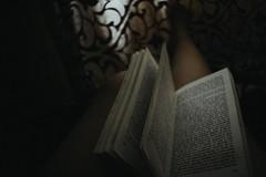 otros 003 (mkaty9828) Tags: libro oscuro film effect claridad tranquilidad enfoque letras literatura dante hojas lectura
