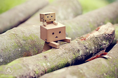 Obstacles (Antty+) Tags: park wood friends brown never sexy green up garden paper climb other jump log singapore sad box board faith hard deep run boring mo give have together card trust anton lame ang each tang overcome kio obstacles bishan danbo danboard danboru antty