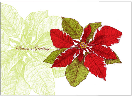 Christmas Poinsetta 5 x 7 greeting card.