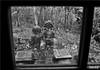 Noi (Luca Morlok) Tags: italy window canon italia natura finestra statua fable fiaba