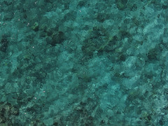 Life Approximates Art (TomBenedict) Tags: ocean above sea usa seascape abstract nature water horizontal photography hawaii marine pattern outdoor turquoise aerialview nopeople aerial bigisland kap reef colorimage directlyabove